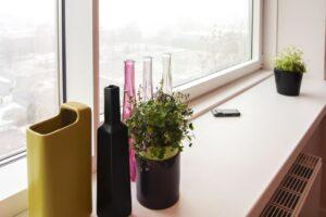 mieszkanie na wynajem - widok z okna